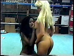the female wrestling porn videos and pictures online
