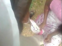 indian tamil outdoor blowjob and cim