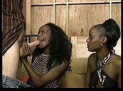 Ebony Sister& 039;s and a White Dick